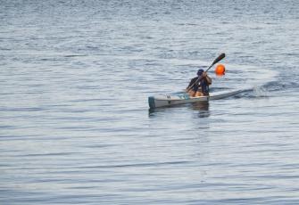 Paddle-2731